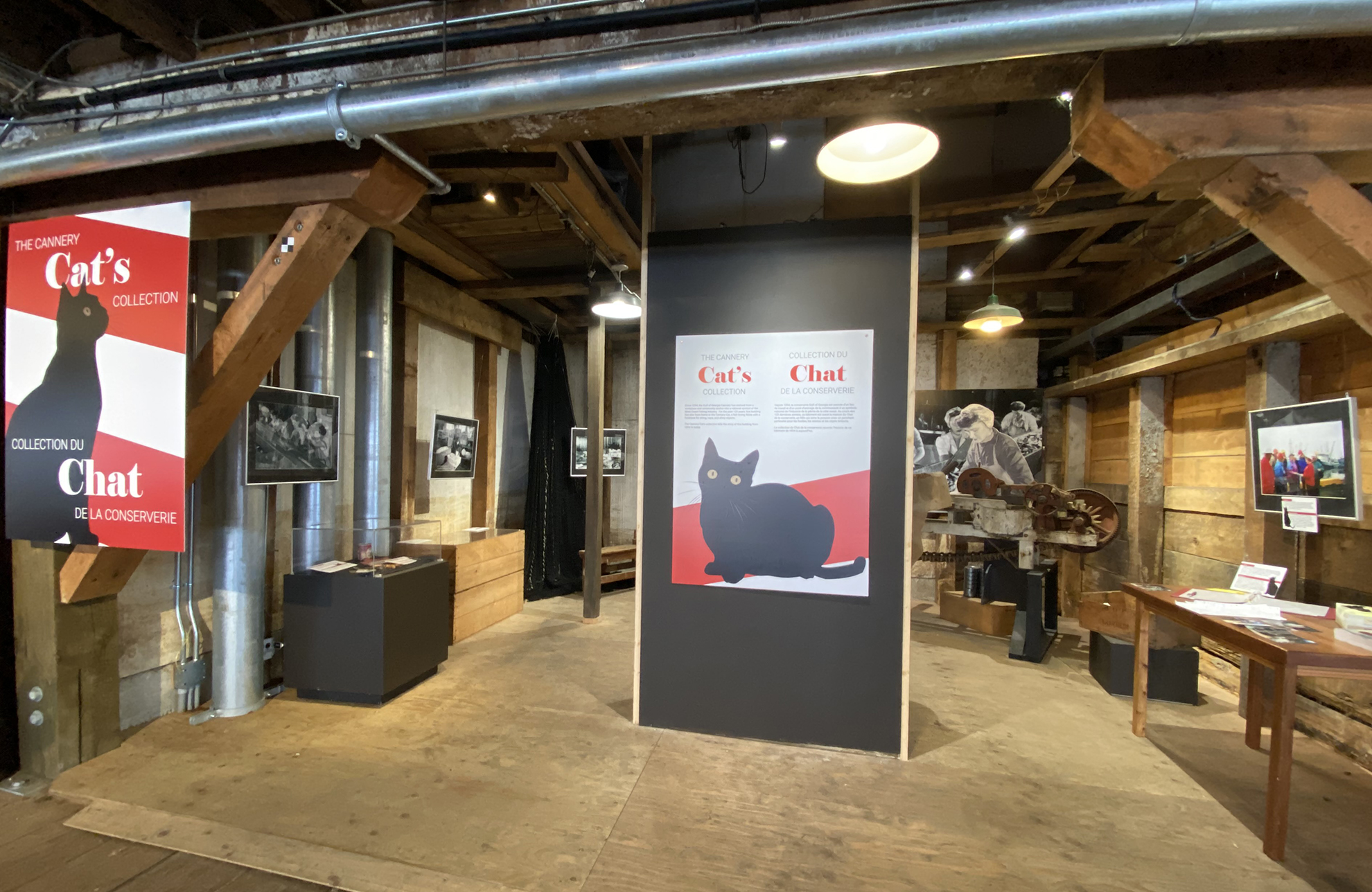 Cannery Cat exhibition display