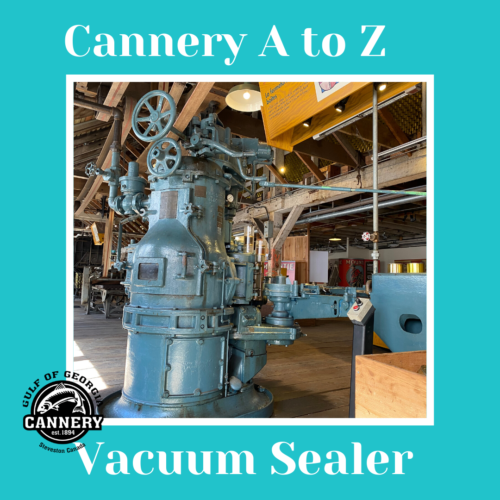 Cannery A to Z: V is for Vacuum Sealer